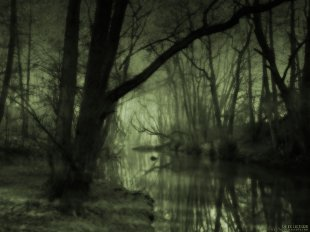 dark smelly swamp